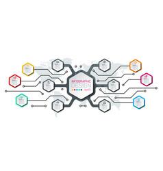 hexagon inforgraphics on graphic art vector image