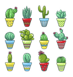 home cactus set vector image