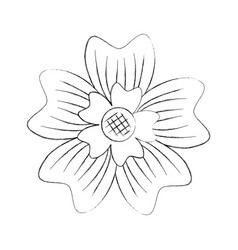 Periwinkle flower adornment nature plant vector