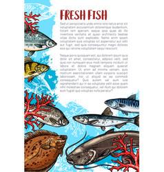 Poster of fresh fish or sea food vector