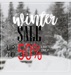 winter sale lettering design season shopping vector image