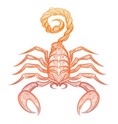 colorful ornate zodiac sign scorpio vector image vector image