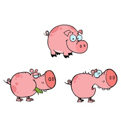 Pink Pigs Collection vector image vector image
