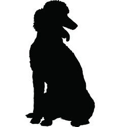 Poodle Silhouette vector image vector image