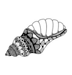 Hand drawn sea shell vector