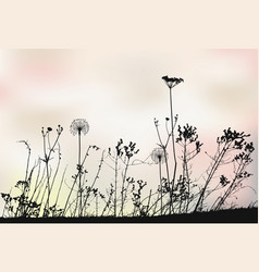 meadow floral background with dandelions vector image vector image
