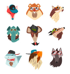 animals wearing hats and sunglasses hipster vector image