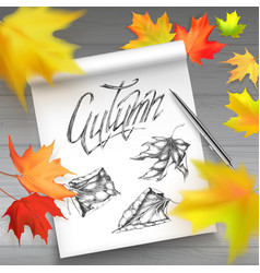 hello autumn banner with leaves vector image