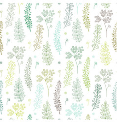 herbal seamless pattern vector image