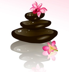 Hot Stone and Flower Design vector image