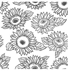 seamless pattern with sunflowers black and white vector image
