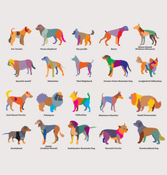 set of colorful mosaic dogs silhouettes-4 vector image