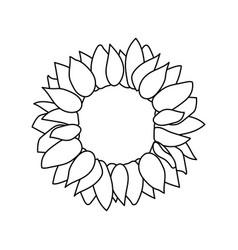 Sunflower seed head flower vector
