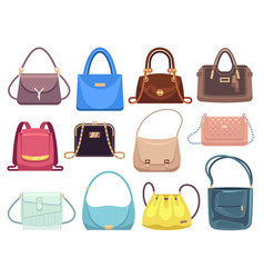 Womens bags ladies handbags with fashion vector