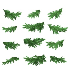 Christmas tree green branches set vector image