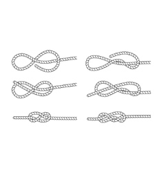 Rope knot on a white background vector image