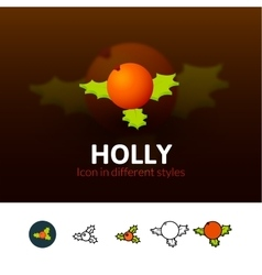 Holly icon in different style vector image