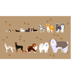 cartoon dogs of different breeds vector image