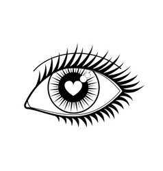 eye of lover icon vector image