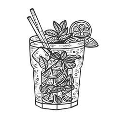 Mojito cocktail sketch engraving vector