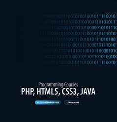 programming courses banner for social media vector image