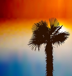 Tropical background with palm tree at sunset vector