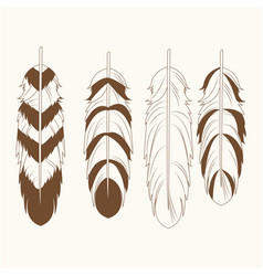 collection differents feathers free spirit vector image vector image