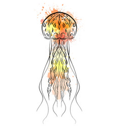 contour black and white of jellyfish vector image