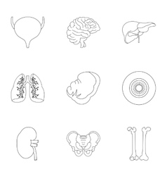 Human organs icons set outline style vector