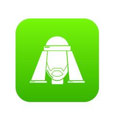 man egypt icon green vector image