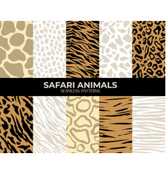 seamless patterns animal fur print tiger vector image