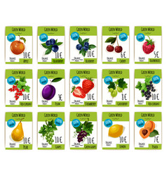 fruit and berry price tag label product card set vector image vector image