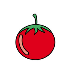 Colorful vegetable tomato icon vector