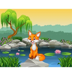 Cute fox sitting on the rock vector