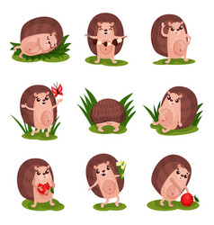 cute hedgehog set funny animal cartoon characters vector image