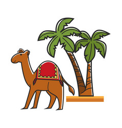 Egiptian camel with saddle and tall tropical palms vector