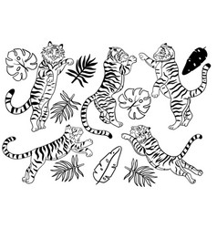 Set jumping tigers isolated on a white vector