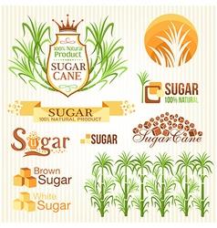 Sugar design elements vector