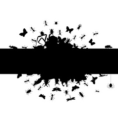 frame of insects vector image vector image