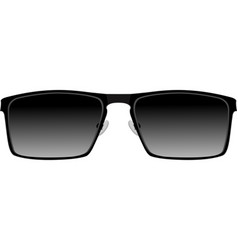 black sunglasses vector image
