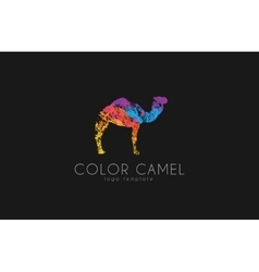 Camel logo Color camel logo design Animal logo vector