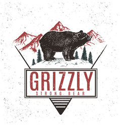 old retro logo with bear grizzly vector image