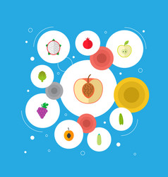 set of berry icons flat style symbols with apple vector image
