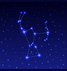 The constellation of orion vector