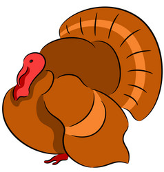 turkey bird vector image