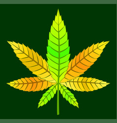 yellow cannabis leaf vector image