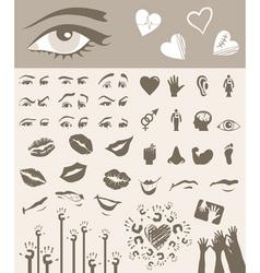 body parts design elements vector image vector image