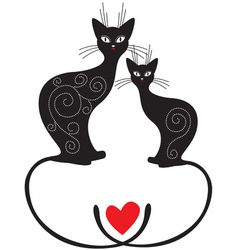 pair cats vector image vector image