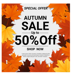 Autumn sale banner with colorful leaves vector
