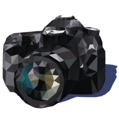 Camera triangle vector